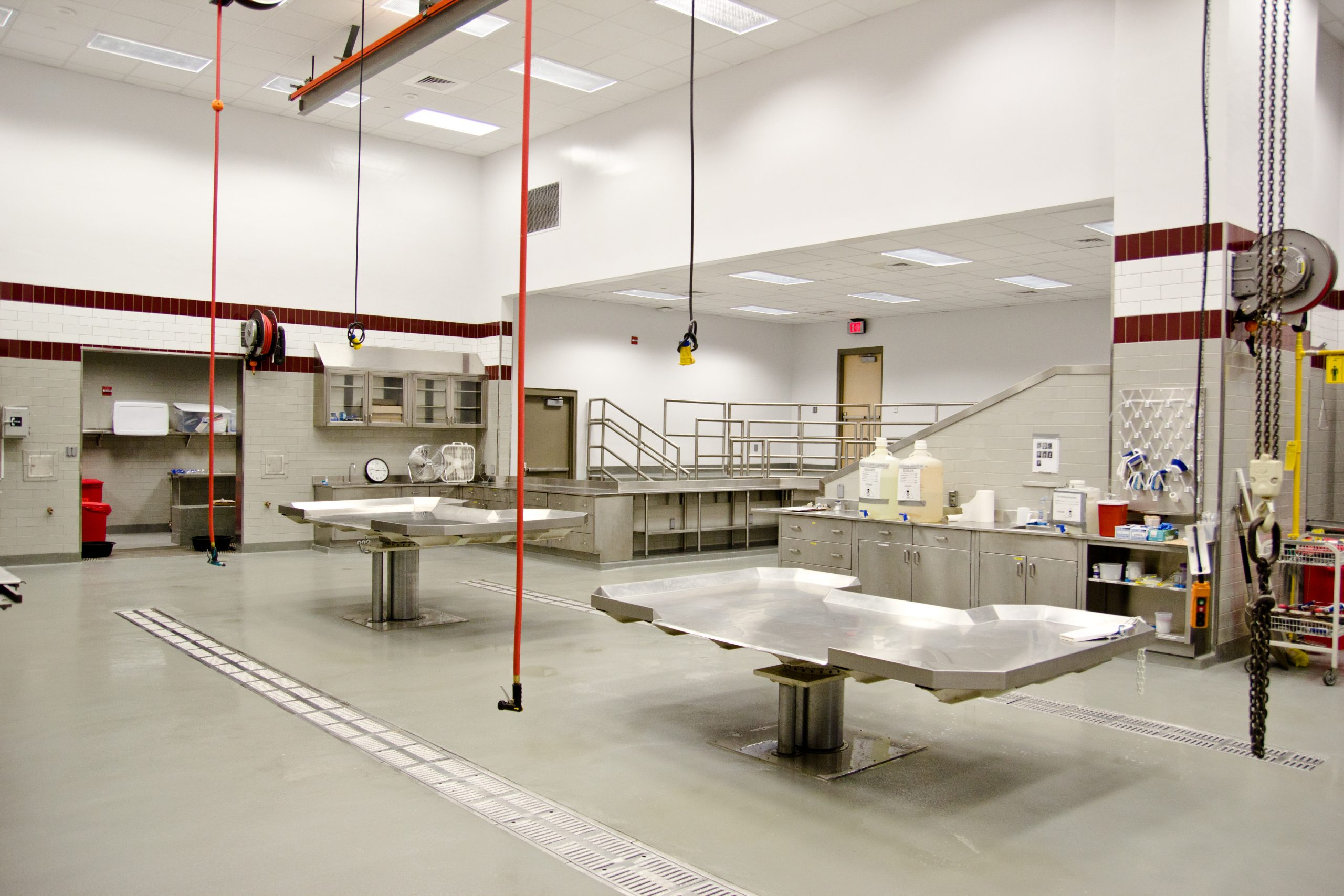Wise Center – Necropsy Lab